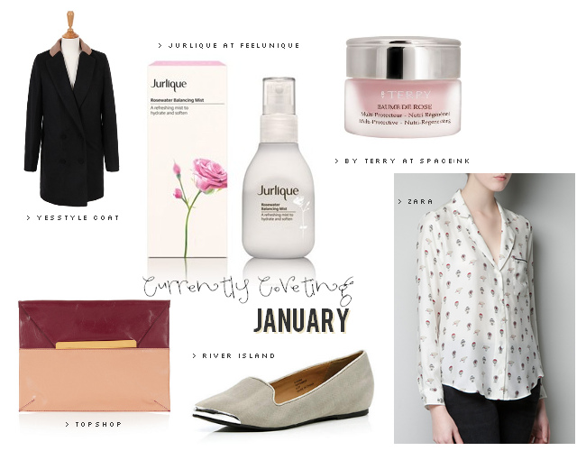 Currently Coveting: January 2013