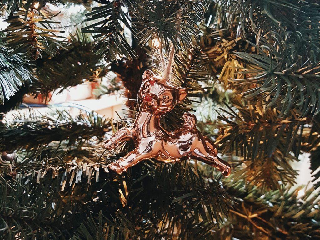 Merry Christmas Daisybutter