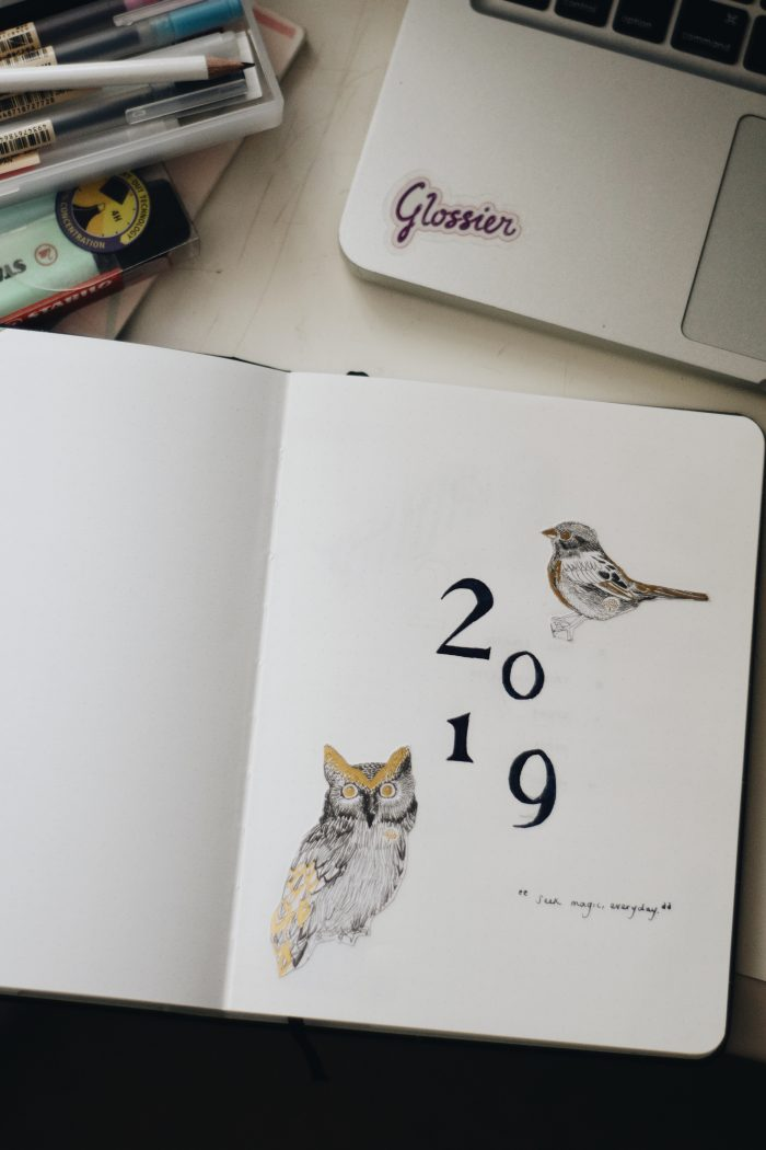 My 2019 Bullet Journal